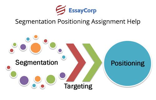 Segmentation Positioning Assignment Help - EssayCorp