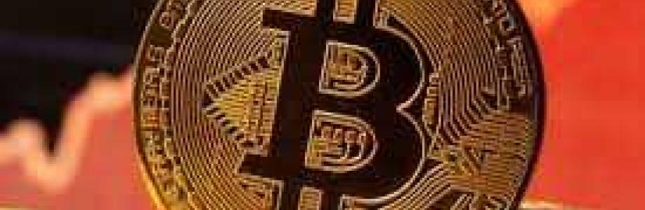 Bitcoin Evolution Cover Image